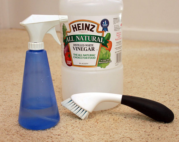 Top 7 cleaning tips for carpets new generation flooring and carpets tip 2 clean spillsdirt marks immediately solutioingenieria Images